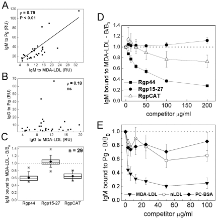 Association between human serum IgM to P. gingivalis and MDA-LDL, and competitive binding with recombinant gingipain domains. Sera from 29 healthy adults were analyzed for IgM (A) and IgG (B) binding to Pg and MDA-LDL by chemiluminescence immunoassay. Associations between antibody levels were analyzed with Spearman rank correlation test. Human sera were pre-incubated with recombinant gingipain domains Rgp44, Rgp15–27, RgpCAT (C, D) in a competitive immunoassay detecting IgM binding to immobilized MDA-LDL. The ratio of serum IgM binding (B/B 0 ) to MDA-LDL with and without competitor (175 µg/ml) in 29 human serum samples (C) and dose-dependent competition assays of one sample (D). Reciprocal competition assay was performed to analyze human serum IgM binding to Pg antigen competed with MDA-LDL, nLDL and PC-BSA in a representative sample (E). RU, relative units.