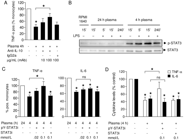 STAT3 signaling is required for the suppressive effects of post-perfusion plasma on TNF-α production. A . Pre-treatment of 4 h post-surgery plasma samples with anti-IL-10 partially restored TNF-α production by patient monocytes in response to LPS (n = 10). Control: plasma from healthy donors. B . Activation of STAT3 in monocytes by incubation with suppressive (4 h post-perfusion) but not control (24 h post-perfusion) plasma. Cells were incubated in the absence or presence of LPS to match the experimental setup as in Fig. 2 . C . Pre-treatment of patient PBMC with active STAT3 inhibitor (pY-STAT3i) but not control peptide (STAT3i) before LPS stimulation in the presence of post-surgery plasma restored TNF-α synthesis (left panel), in contrast to IL-6 (right panel). Shown are percentages of TNF-α and IL-6 producing monocytes normalized to control (24 h post-surgery) plasma (n = 8). D . TNF-α and IL-6 levels measured in supernatants of LPS-stimulated mononuclear cells after pre-treatment with STAT3 inhibitor or control peptide, in the presence of 4 h post-surgery plasma (n = 8). Cytokine levels were normalized to LPS stimulation in control plasma from healthy donors due to interassay variability. All results are depicted as mean ± SEM. * P
