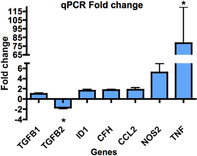 Fold changes in expression of genes not seen to change on the microarray, as shown by qPCR. All qPCR reactions were performed in duplicate on cDNA extracted from 4 separate donors. Genes were amplified using Taqman probes and Taqman Universal PCR master mix (Applied Biosystems). Genes were selected for further qPCR analysis, based on the immune and TGF-β gene groups of interest seen in the microarray analysis. Statistical analysis was undertaken using the REST program (Qiagen), which uses a pair-wise fixed reallocation randomization test to determine significance. Averaged values of duplicate samples from 4 separate donors were statistically analyzed. However, despite appreciable fold-changes in some samples, only TNF and TGF-β2 genes in WNV-infected RPE were statistically different from uninfected RPE. * represents p