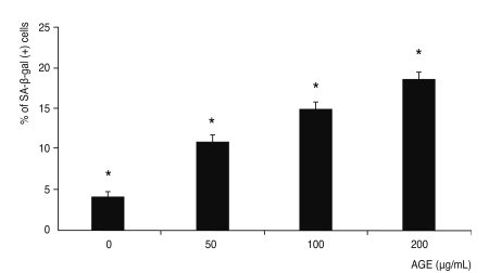 Effect of advanced glycation end products (AGE) on the senescence of trabecular meshwork cells. AGE significantly increased the percentage of senescence-associated β-galactosidase (SA-β-gal) (+) cells in a dose-dependent manner ( * p