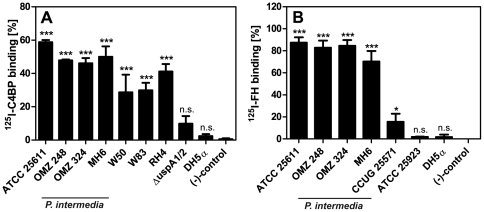 P. intermedia  isolates bind purified FI cofactors C4BP and FH. The indicated  P. intermedia  strains, as well as A)  M. catarrhalis  RH 4,  P. gingivalis  W50 and W83 (C4BP binding positive controls),  M. catarrhalis  Δ uspA 1/2, and  E. coli  DH5α (C4BP binding negative controls) or B)  S. pyogenes  CCUG 25571 (FH binding positive control),  S. aureus  ATCC 25923, and  E. coli  DH5α (FH binding negative controls) were mixed with (A) 500 kcpm  125 I-C4BP or (B)  125 I-FH and incubated for 1 h at RT. Proteins bound to bacteria were detected as described in   Fig. 1 . Samples containing  125 I-labeled proteins that were incubated with buffer alone served as negative controls. Bars represent averages of three independent experiments performed in duplicates and SD are indicated as error bars. One-way ANOVA and Tukey's post-hoc test was used for statistical analysis as compared to negative controls (*** p
