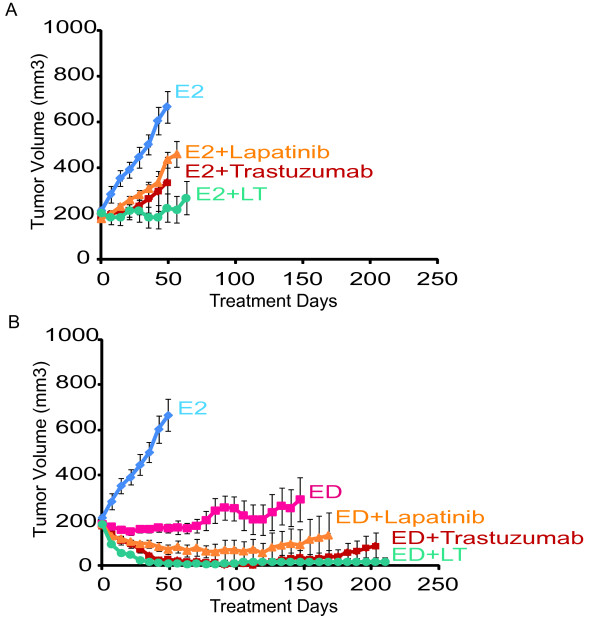 Growth of UACC-812 xenografts treated with various anti-HER2 treatments, with or without estrogen deprivation . (A) Treatment in the presence of estrogen supplementation, representing no endocrine therapy. Treatments included: Estrogen alone (E2) or with lapatinib (E2 + L), trastuzumab (E2 + T), or their combination (E2 + L + T). (B) Treatments in the presence of endocrine therapy in the form of estrogen deprivation. Treatments included: Estrogen (E2), estrogen deprivation (ED) alone, or along with lapatinib (ED + L), trastuzumab (ED + T), or their combination (ED + L + T). Results are presented as the mean tumor volume; error bars represent the standard error.