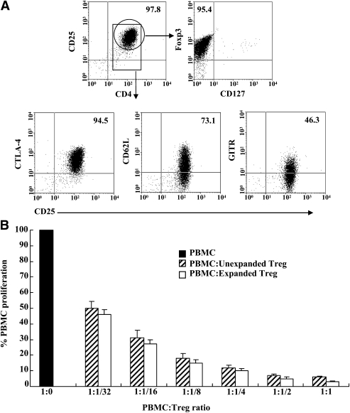 Ex vivo expanded human CD4 + CD25 + CD127 lo cells retain Treg-suppressive characteristics. A: Representative FACS analysis of Treg phenotype. Gates were set on CD4 + and CD4 + CD25 + cells, respectively. FoxP3 and other marker expression was shown as the percentage of CD4 + CD25 + cells coexpressing individual Treg markers examined. Data represent one of four independent experiments with Treg from four individual donors. B: In vitro suppression assay of unexpanded and expanded human Treg. CFSE-labeled CD25 + cell-depleted human PBMC were stimulated with irradiated xenogeneic pig PBMC in the presence or absence of serial dilutions of unexpanded and expanded autologous Treg for 5 days prior to measurement of xenoreactive PBMC proliferation by CFSE dilution. Data are presented as mean ± SD of three independent experiments.