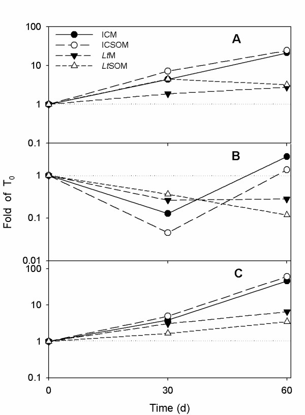 q-PCR analyses of 16S rRNA , bph and C230 abundances in myco-augmented microcosms and respective controls . Semi-logarithmic plots of time dependent changes in the relative amount of 16S rRNA (A) bph (B), C230 (C) qPCR-amplified genes in the incubation control and Lentinus tigrinus microcosms in the absence ( i.e ., ICM and Lt M respectively) and in the presence of 2.5% (w/w) soybean oil ( i.e ., ICSOM and Lt SOM). Data are expressed as fold with respect to the relative zero time-point (please, see Materials and Methods).