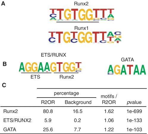 DNA sequence motifs enriched in R2ORs. Motifs enriched in R2ORs compared to 1603 matched random sequences were identified using HOMER 3.1. ( A ) Logo for the top motif ( Runx2 ) is shown above the Runx1 logo identified by Pencovich et al. ( 35 ). ( B ) Motifs identified after R2ORs were re-analyzed as in A following masking of the Runx2 motifs. ( C ) Motif statistics. P- values are for motif enrichment. The percentages of R2ORs containing at least one copy of each motif are indicated against the percentage of motif-containing random sequences. Motifs/R2OR indicates for each motif the average number of copies per R2OR in R2ORs containing at least one copy.