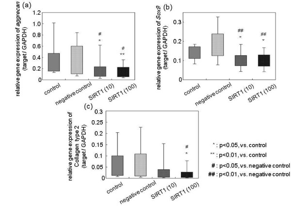 Effect of exogenous SIRT1 on the extracellular matrix metabolism of nucleus pulposus cells . mRNA expression of (a) aggrecan , (b) Sox9 and (c) collagen type 2 following treatment with recombinant human silent mating type information regulator 2 homolog 1 (rhSIRT1). Data were obtained from 11 patients (six lumbar spinal stenosis and lumbar disc herniation patients, and five idiopathic scoliosis patients). <t>GAPDH,</t> glyceraldehyde 3-phosphate dehydrogenase.