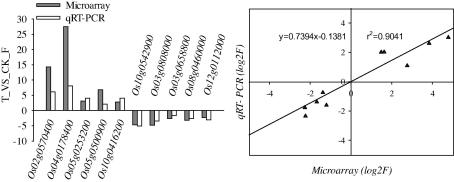 Confirmation of the microarray results by qRT-PCR. Analysis by qRT-PCR of 10 genes selected from the IMI-responsive genes was performed with RNA extracted from control rice sheaths or 60 ppm IMI treated rice sheaths. The fold change of related genes after 60 ppm IMI treatment is presented on the left. The correlation between microarray signal ratios and qRT-PCR is presented on the right..