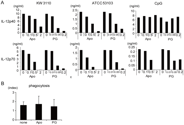 ROS dependent IL-12 production from LAB stimulated macrophage. (A) Peritoneal macrophages were cultured with 1 µg/ml KW3110, ATCC53103 or 1 µM CpG for 24 hrs in the presence of 0, 0.1, 0.5 or 2 mM apocynin (Apo) or 0, 0.01, 0.05 or 0.2 mM propyl gallate (PG). IL-12p40 and IL-12p70 in the cell culture supernatant were measured by ELISA. (C) Peritoneal macrophages were cultured with FITC-labeled identical KW3110 (3 µg/ml) in the presence of Apocynin or propyl gallate. Phagocytosis index was calculated in the same manner as described in Fig. 1A . Data are representative of three independent experiments.