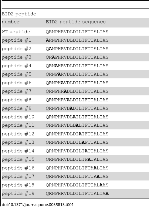 Analysis of EID2 binding to MAGE proteins. ( A. ) Quantification of relative binding of the MAGEC2(129-339) protein (red columns) to the EID2 protein-based synthetic mutant peptides (listed in Table 1 ) using the PEPSCAN-ELISA method. Results show mean ± SEM of 3 independent measurements. His-hTRF2 protein (white column) was used in the control experiment. ( B. to D. ) The short (biotin-SGSG- 201 HRVDLDILTFTIALTAS 217 ) and long (biotin-SGSG- 197 QRNPHRVDLDILTFTIALTAS 217 ) EID2 peptides were pre-bound to the streptavidin-agarose beads and then incubated with in vitro translated MAGEC2 (aa 6-373; C2 in panel B. ), MAGEA1 (aa 1-309; A1 in panel C. ) and/or necdin (aa 1-321; nd in panel D. ) protein, respectively. ( E. ) Wild type and selected EID2 mutant peptides (as indicated) were pre-bound to the streptavidin-agarose beads and then incubated with in vitro translated necdin protein. The reaction mixtures were analyzed by 15% SDS–PAGE gel electrophoresis. The amount of the in vitro translated proteins was measured by autoradiography. Control, no peptide.