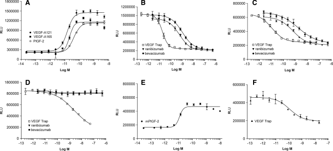 The effects of VEGF Trap, ranibizumab and bevacizumab on luciferase activation induced by VEGF-A 121 , VEGF-A 165 , human PlGF-2 (hPlGF-2) or mouse PlGF-2 (mPLGF-2) in HEK293/VEGFR1 cells. a Dose response curves for VEGF-A 121 , VEGF-A 165 and hPlGF-2 yielded EC 50 values of 13, 17, and 29 pM, respectively. b Serial dilutions of VEGF Trap ( open box ), ranibizumab ( triangle ), or bevacizumab ( closed circle ) were added to HEK293/VEGFR1 cells along with 20 pM of VEGF-A 121 . c Serial dilutions of VEGF Trap ( open box ), ranibizumab ( triangle ), or bevacizumab ( closed circle ) were added to HEK293/VEGFR1 cells along with 20 pM of VEGF-A 165 . d Serial dilutions of VEGF Trap ( open box ), ranibizumab ( triangle ), or bevacizumab ( closed circle ) were added to HEK293/VEGFR1 cells along with 40 pM of human PlGF-2. e Dose response curve for mPlGF-2 yielded an EC 50 value of 10 pM ( f ). Serial dilutions of VEGF Trap were added to HEK293/VEGFR1 cells along with 20 pM of mPlGF-2. The cells were incubated for 6 h and OneGlo luciferase substrate was then added to each well. The plates were read on a luminometer and the data were plotted using a four parameter curve fit with GraphPad Prism. Each point represents a replica of 3 wells at each concentration