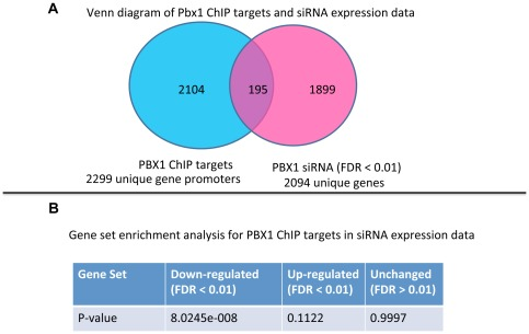 PBX1 binds to a specific set of genes and controls their transcription in ovarian cancer. A: Venn diagram of PBX1 ChIP-chip target genes and PBX1 transcriptome reveal a set of overlapping genes that are direct target genes of PBX1. The full list of the overlapping genes is shown in Table S5 . Experiments were performed in OVCAR3 cells. B: Gene set enrichment analysis was performed to determine if PBX1 ChIP targets are enriched in the PBX1 transcriptome. Genes down-regulated by PBX1 siRNA are significantly enriched in the PBX1 ChIP target set.