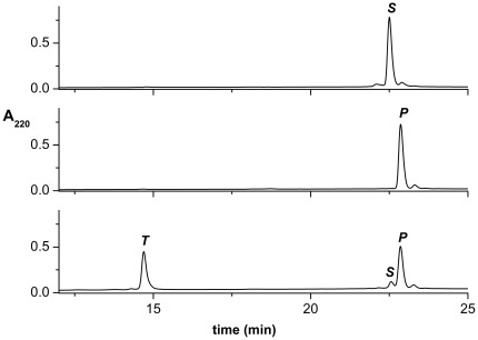 The examples of chromatograms of reaction mixture containing initially 80 µM <t>SPI2-SRHWAP-His</t> 6 fusion protein loaded on the <t>Ni-NTA-agarose</t> column, incubated with 4 mM NiCl 2 in 100 mM Hepes buffer, pH 8.2 at 50°C. From top to bottom: control fusion protein (incubated without Ni(II) ions), incubation buffer, and two pooled wash fractions (250 mM imidazole) after 22 h of incubation.