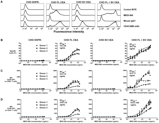 Role of the CEA splice variant in MEDI-565 mediated T cell activation and target cell killing. A, expression of full-length CEA and CEA splice variant proteins in <t>CHO</t> cells as determined by flow cytometry. Mouse IgG1, mouse IgG1 control antibody. B, CHO <t>DHFR-,</t> CHO FL, CHO SV and CHO FL+SV cells were tested for their susceptibility to be killed by CD3+ T cells from 3 individual donors in the presence of MEDI-565 at the indicated concentrations. EC 50 values listed indicate the mean value among 3 donors±standard error of the mean. p = 0.79 comparing cytotoxicity EC 50 values between CHO FL CEA and CHO FL+SV CEA cells. C, activation (increased cell surface CD25/IL-2R levels) of CD8+ T cells and D, activation of CD4+ T cells isolated from each of the 3 healthy donors was investigated concurrently with the cytotoxicity assays shown in panel B. p = 0.60 comparing CD8+ T cell activation EC 50 values between CHO FL CEA and CHO FL+SV CEA; p = 0.15 comparing CD4+ T cell activation EC 50 values between CHO FL CEA and CHO FL+SV CEA. MFI CD25-APC = mean fluorescence intensity of bound APC labeled, anti-human CD25 mAb. Experiment was repeated once with similar results.