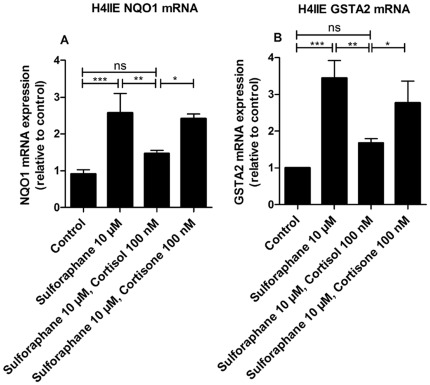 Inhibition of Nrf2-induced mRNA expression of NQO1 and GSTA2 by cortisol. H4IIE cells were incubated for 24 h at 37°C with 10 µM sulforaphane in the absence or presence of 100 nM cortisol or cortisone, respectively, followed by determination of NQO1 (A) and GSTA2 mRNA levels (B) by real-time RT-PCR. Data (mean ± S.D. from three independent experiments performed in triplicate) represent ratios of NQO1 and GSTA2 mRNA to GAPDH control mRNA from treated cells normalized to the values obtained from cells incubated with vehicle (DMSO). *, p