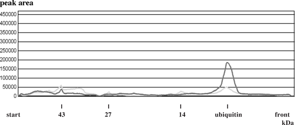 Overlay of the densitogram curves before and after ubiquitylprotein-isopeptidase incubation of the white muscle APFII Figure 8c shows the densitogram curves before (green lane) and after (red lane) enzyme incubation of 200 μg white muscle-APFII and 25 μg ubiquitylprotein-isopeptidase (see material) . The batches incubated with ubiquityl-isopeptidase had a final concentration of 50 mM tris/HCl, 1 mM DTE, 50 μM PMSF and 5 μg/ml leupeptine, pH 8.0. After incubation at 37°C for a given time (60 min) in a waterbath the reaction was irreversible inhibited by an final concentration of 5 mM iodacetamide and 10% w/v TCA (final concentration 5% TCA, 20 min, 0°c). Each batch was incubated with 25 μg ubiquitylprotein-isopeptidase. both densitograms were overlayed to estimate the release of unconjugated (free) ubiquitin.