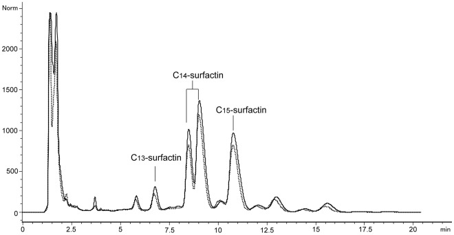 HPLC profile of surfactin produced by B. amyloliquefaciens MB199. The elution was monitored at 210 nm at a flow rate of 1 mL/min. The dashed line and the real line represent the HPLC profiles of surfactins produced in optimized and original culture media, respectively.