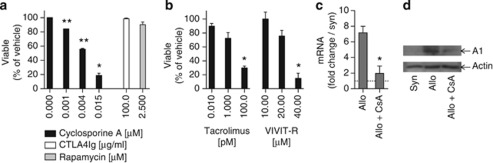 Signal 1 determines resistance to ABT-737 in activated T cells. ( a ) Selective inhibitors of signal 1, 2 and 3 were added to an MLR during the stimulation phase with BM3.3 splenocytes reacting against CD8 T-cell-depleted B6 splenocytes to investigate the role of the different T-cell activation pathways for resistance to ABT-737(1 μ M, during additional 12 h of culture). The calcineurin inhibitor and signal 1 blocker CsA prevented resistance to ABT-737 in a concentration-dependent manner, whereas inhibition of signal 2 by CTLA4Ig and signal 3 by rapamycin did not influence this process. ( b ) The results obtained with CsA were confirmed by other inhibitors of this same pathway, namely the alternative calcineurin inhibitor tacrolimus and the NFAT inhibitor <t>VIVIT-R.</t> Cell viability of BM3.3 CD8 T cells was assessed by PI exclusion in FACS in at least three independent experiments. Percentage of cells treated with vehicle is given. Statistical comparison of ABT-737 versus vehicle: * P