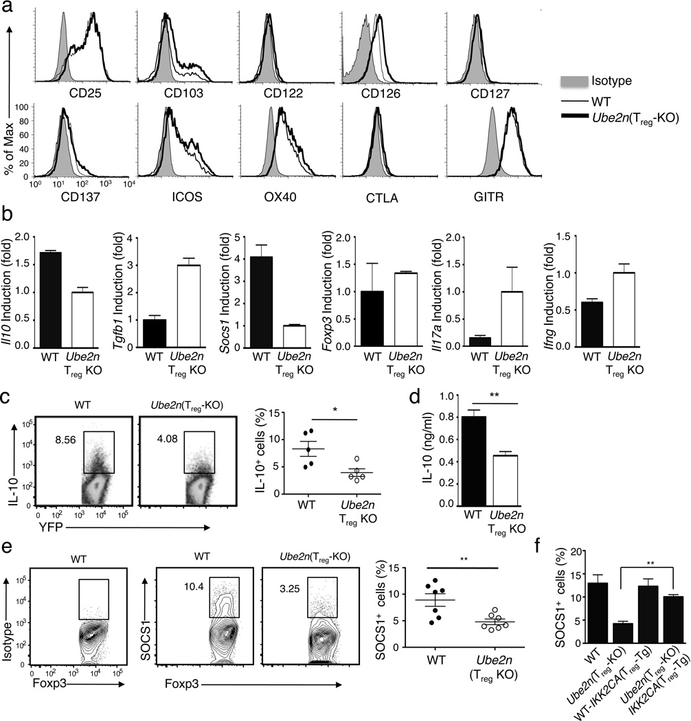 Ubc13 is dispensable for expression of T reg signature genes but regulates expression SOCS1 and IL-10 ( a ) Flow cytometric analysis of splenocytes derived from WT-R26 YFP and Ube2n Treg-KO R26 YFP mice (5 weeks old), measuring the expression of surface markers on T reg cells (gated on Foxp3 + CD4 + ). Data are representative of two independent experiments. ( b ) Real-time RT-PCR analysis of the relative mRNA expression level of the indicated genes in YFP + CD4 + T reg cells, sorted (based on YFP) from 5-week old WT-R26 YFP and Ube2n Treg-KO R26 YFP mice. Data were normalized to a reference gene, β-actin. ( c ) Flow cytometry measuring the frequency of IL-10-producing cells among the YFP + CD4 + T reg cells from MLN of WT-R26 YFP and Ube2n Treg-KO R26 YFP mice (5 weeks old). Data are representative (left) and summary (right) of three independent experiments (n=5/genotype). *p=0.05 (two-tailed unpaired t-test). ( d ) ELISA determining IL-10 production by purified YFP + CD4 + T reg cells stimulated with PMA and ionomycin for 24 h. Data are mean±SD of three independent experiments. ( e ) Flow cytometric analysis of SOCS1-expressing cells in Foxp3 + CD4 + T reg cells from MLN of WT-R26 YFP and Ube2n Treg-KO R26 YFP mice (6 weeks old). Data are representative (left) and summary (right) of three independent experiments (n=4–7/genotype in each experiment). **p=0.01 (two-tailed unpaired t-test). ( f ) Flow cytometric analysis of SOCS1-expressing T reg cells in the indicated littermates (6 weeks old), presented as a summary graph. **p=0.01 (two-tailed unpaired t-test).