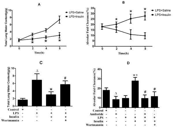 Effect of exogenous insulin on pulmonary edema and alveolar fluid clearance in LPS-induced actue lung injury (n = 6 per group) . (A) Total lung water content at 0, 2, 4, 8 hours after LPS or insulin treatment. (B) Alveolar fluid clearance at 0, 2, 4, 8 hours after LPS or insulin treatment. (C) Total lung water content at 8 hours after LPS-induced actue lung injury or saline treatment (D) Alveolar fluid clearance at 8 hours after LPS-induced actue lung injury or saline treatment. Albumin solution containing amiloride (5 × 10 -4 M) were injected into the alveolar spaces. Data are presented as mean ± S.E.M.Δ P
