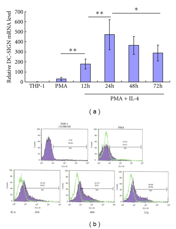 IL-4-induced high expression of DC-SIGN on THP-1 cells over time. THP-1 cells were treated with or without PMA for 24 hours, or with PMA for 24 hours and IL-4 for up to 72 hours. (a), the quantitative analysis of the level of DC-SIGN mRNA in differentiated THP-1 cells by PMA and IL-4 by SYBR Green real-time PCR. (b), analysis of induced DC-SIGN expression on surface of differentiated THP-1 cells by flow cytometry. The percentage of positive cells (top number) and mean fluorescence intensity (figure below) are shown. *means P