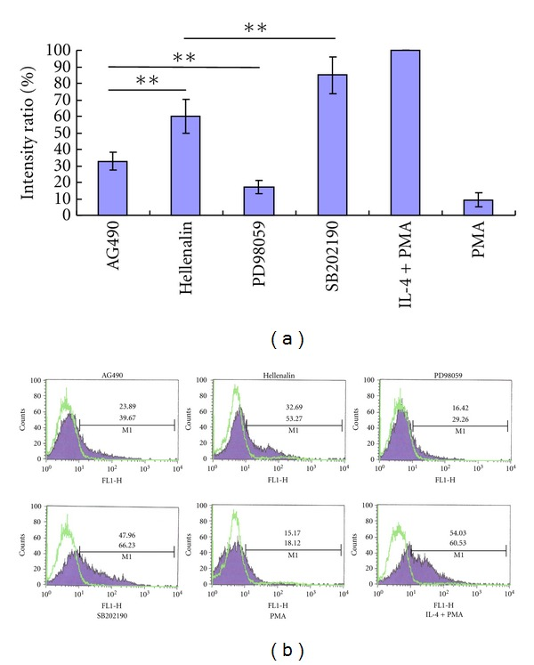 Inhibition of DC-SIGN expression by specific inhibitors of signaling pathways. DC-SIGN expression was detected on THP-1 cells differentiated by PMA, PMA plus IL-4, or PMA plus IL-4 treated with specific inhibitors (Helenalin, AG490, SB202190, and PD98059). (a), The relative levels of DC-SIGN mRNA detected by real-time PCR. The levels of DC-SIGN mRNA in PMA plus IL-4 treated THP-1 cells were valued as 100%, and used as a reference. *means P