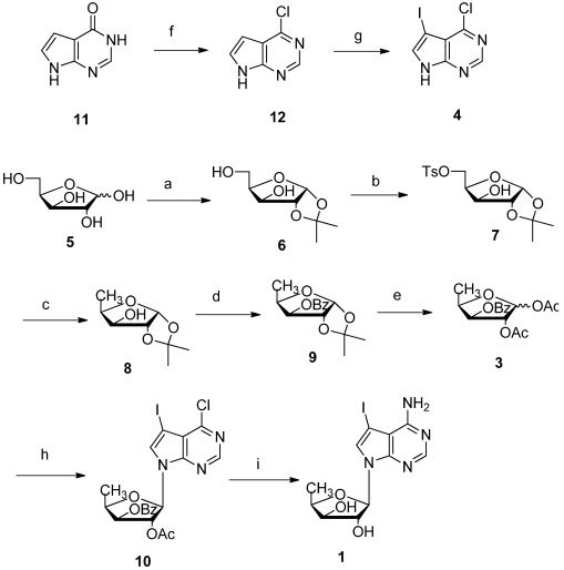 Total synthesis of pyrrolo[2,3- d ]pyrimidine nucleoside 1 . Reagents and conditions: ( a ) (a1) Conc. H 2 SO 4 , acetone, 0 °C, 3 h; (a2) 5% Na 2 CO 3 aq., 30 min, 87%; ( b ) TsCl (1.1 eq.), THF, Et 3 N, 0 °C, overnight, 92%; ( c ) LiAlH 4 (0.5 eq.), THF, reflux, 6 h, 95%; ( d ) BzCl (1.1 eq), CH 2 Cl 2 , Et 3 N, 2 h, 98%; ( e ) Conc. H 2 SO 4 , Ac 2 O, 26 h, 78%; ( f ) POCl 3 (excess), reflux, 3 h, 98%; ( g ) NIS (1.01 eq.), DMF, 0 °C, 2 h, 98%; ( h ) 4 (1 eq.), BSA (1.2 eq.), TMSOTf (1 eq.), CH 3 CN, rt-80 °C, 12 h 56%; ( i ) Sat. NH 3 in MeOH (excess), 130 °C, 12 h, 82%.