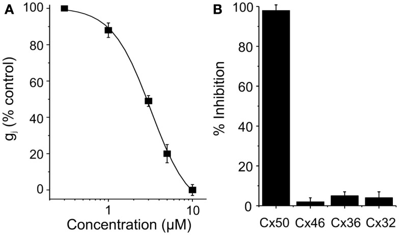 (A) Dose-concentration curve for Cx50 inhibition by clotrimazole. (B) Connexin-selectivity profile of clotrimazole (10 μM). Shown is percentage of current inhibition (mean ± SEM).