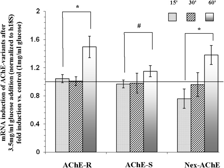 mRNA expression of N-extended AChE, AChE-S, and AChE-R isoforms following treatment of Y79 cells with glucose for 1 h. Y79 cells were pre-treated for 16–24 h in starvation medium (1% FBS and 1 mg/ml of glucose) and then with 3.5 mg/ml glucose for different time intervals. Total <t>RNA</t> was extracted and <t>cDNA</t> was prepared for real-time PCR procedure as described under Materials and Methods. Results are presented as fold of control cells cultured in starvation media. Values are means ± SEM, ( N = 4). * p