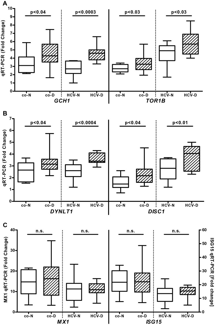 "Enhanced IFN-mediated induction of selective ISGs in HCV patients with IFN-induced depression ( in vivo ) and psychiatric patients with a severe depressive episode (SDE, in vitro ). Total RNA was isolated from peripheral blood of hepatitis C virus (HCV) infected patients with (n = 11, ""HCV-D"") or without (n = 11, ""HCV-N"") IFN-induced depression 12 hours before and 12 hours after the first injection of pegylated IFN-α2a. Expression of IFN stimulated genes (ISGs) was analyzed by quantitative RT-PCR (panel A: GCH1 , TOR1B ; panel B: DYNLT1 , DISC1 ; panel C: MX1 , ISG15 ). To validate the data in an independent cohort, PBMC were isolated from 11 healthy controls (""co-N"") and 22 patients hospitalized for a SDE (""co-D"") and stimulated with 100 U/mL pegylated IFN-α2a in vitro for 16 h followed by isolation of total RNA. Data are shown as box plots (range, 25% and 75% percentile, mean)."