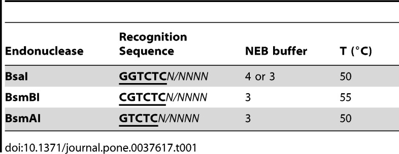 Split-and-pool assembly of DNA synthons. (A) Entry synthons are flanked on both sides by recognition sequences for the type IIS endonucleases BsaI and BsmBI. Restriction by either BsaI or BsmBI selectively exposes user-definable 4-base cohesive overhang sequences (5′-XXXX vs. 5′-xxxx) at one end of the synthon, while maintaining orthogonal protection groups (with 5′-YYYY vs. 5′-zzzz overhangs) at the opposite end. (B) Schematic representation of the 'split-and-pool' assembly principle. Cohesive ends of entry synthons are selectively deprotected by digestion with either BsaI or BsmBI. Pooling of the deprotected synthons in the presence of ligase results in unidirectional assembly, affording an idempotent tandem repeat synthon by restoration of orthogonal protecting groups on opposite ends. Each product module can recursively enter the assembly cycle (left panel) N times to yield concatameric synthons with 2N elements. The same strategy can be applied to the assembly of heterosynthons (dashed box), which allows for the engineering of chimeric and multimodular proteins or polycistronic genes.