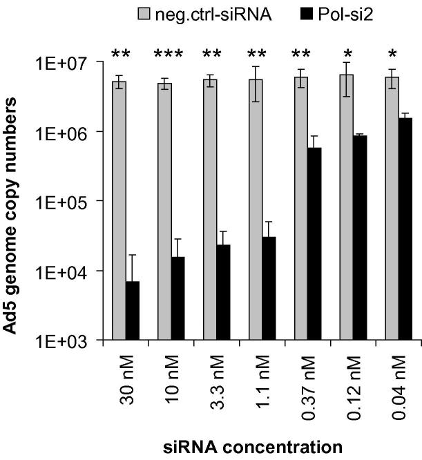 Dose-dependent decrease in Ad5 genome copy numbers mediated by the DNA polymerase siRNA. A549 cells were transfected with the DNA polymerase siRNA or a non-targeting control siRNA (neg. ctrl.) in decreasing concentrations as indicated, and then infected with Ad5 at an MOI of 0.01 TCID 50 /cell. Virus genome copy numbers from triplicate infections (mean ± SD; n = 3) were determined at 48 h post-infection by qPCR, using E1A-specific primers. For each experiment, real-time qPCR quantification was performed in duplicate. * p