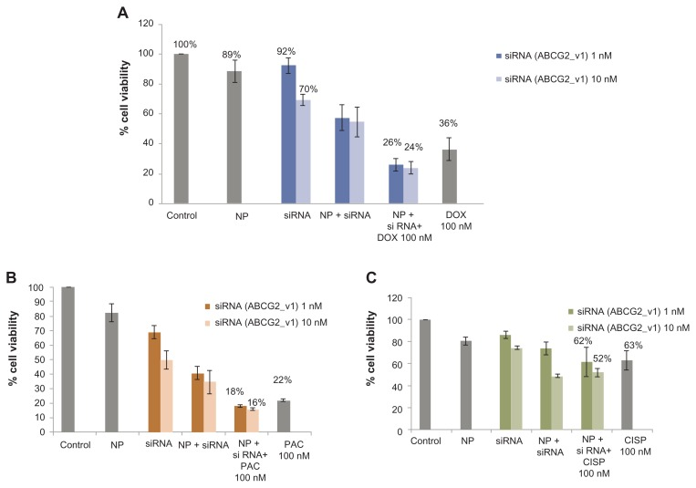 Effect of carbonate apatite-mediated delivery of ABCG2-targeted siRNA (ABCG2_v1) on MCF-7 cell viability in presence of traditionally used chemotherapeutic agents. Anti-ABC siRNA-carbonate apatite complexes were generated by mixing exogenously added 3 mM calcium chloride in 1 mL bicarbonate-buffered DMEM (pH 7.4), followed by addition of anti-ABCG2 siRNA (1 or 10 nM) and incubation at 37°C for 30 minutes. Supplementation of 10% FBS was followed by addition of 100 nM of doxorubicin ( A ) or paclitaxel ( B ) or cisplatin ( C ). Note: Transfection of MCF-7 cells was performed with the siRNA/nanoparticle complexes in presence of the free drugs for a consecutive period of 48 hours and viability of the cells was determined using MTT assay. Abbreviations: NP, nanoparticles; siRNA, small interfering RNA; DOX, doxorubicin; PAC, paclitaxel; CISP, cisplatin.