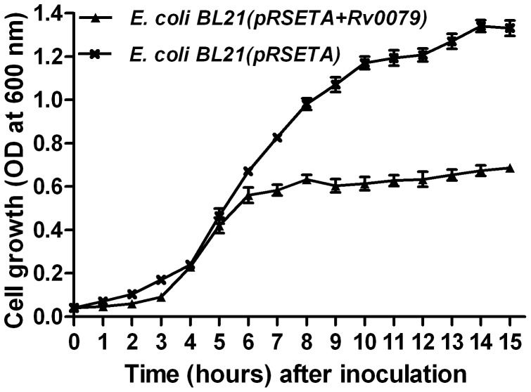 Growth (in broth) of recombinant E. coli expressing DATIN. Broth cultures from E. coli BL21(pRSETA+ Rv0079 ) and E. coli BL21(pRSETA) were inoculated into <t>Luria</t> <t>Bertani</t> broth to give an initial OD (600 nm) of 0.04 and the cultures were incubated for 15 or 24 hr at 37°C under IPTG induction. The growth curves of the strains were generated by measurement of the OD at 600 nm. The values represent the mean of three independent shaking cultures with the standard deviation.