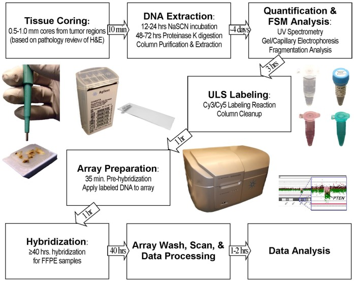 Overview of proposed methods for FSM ULS processing of FFPE specimens. Summary of methods and timeline for aCGH using the FSM method. Following DNA extraction, the workflow and protocol for preparation of fresh or frozen samples is identical to FFPE workflow shown.