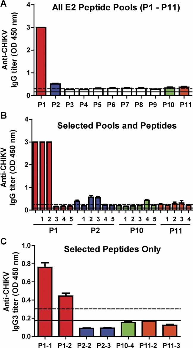 Epitope mapping of the E2 glycoprotein CHIKV-infected patient plasma pools (Median 10 days pio) were subjected to peptide-based ELISA at a dilution of 1:2000, followed by secondary human anti-IgG-HRP using pooled peptides (P1–P11). The same set of patient plasma pools were subjected to peptide-based ELISA at a dilution of 1:2000, followed by secondary human anti-IgG-HRP using both selected peptide pools (P1, 2, 10 and 11) and individual peptides. Selected individual peptides were re-screened with patients' plasma pools at a dilution of 1:200, followed by secondary human anti-IgG3-HRP. Black solid line represents the mean value of the healthy donors and dotted line represents the value of mean ± 6 SD. Values above mean ± 6 SD are considered positive. Results represent an average of two independent experiments.