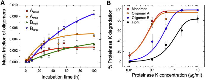 Characterization of the Different Oligomeric Species Formed during αS Aggregation and Fibril Formation (A) The time dependence of the mass fraction of the four oligomeric distributions A small (red squares), A medium (orange circles), B medium (green triangles), and B large (blue triangles). The data shown correspond to the average and standard error of five different experiments. (B) Proteinase K degradation curves of the different protein species (monomer in red, type A oligomer in orange, type B oligomer in blue, and fibrils in black). The data shown here correspond to the average and standard error of three different experiments. See also Figure S3 .