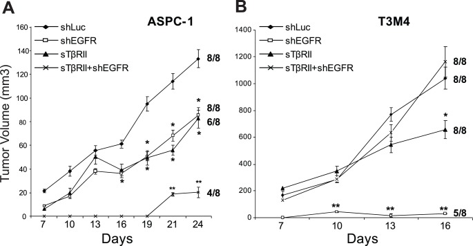 Targeting EGFR and TGF-β pathways exerts different effects on the formation and growth of tumors formed by ASPC-1 and T3M4 cells. ASPC-1 (A) and T3M4 (B) cells were infected with shLuc-LV (shLuc), shEGFR-LV (shEGFR), sTβRII, or both EGFR-LV and sTβRII, and injected subcutaneously (one injection per mouse) into the flank region of nude mice. Tumor volumes were monitored for the indicated number of days. Values are the means ± SEM of 8 mice per group, indicated in the denominator to the right of each curve. The number of tumors that formed in each group is indicated in the numerator. *p