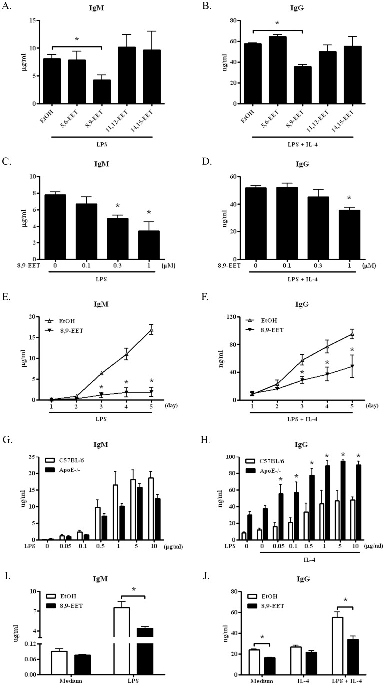 8,9-epoxyeicosatrienoic acid (EET) inhibited B-cell antibody production in C57BL/6 and ApoE−/− mice. ELISA of levels of IgM and IgG (A and B) in the supernatant of cultured B cells from C57BL/6 mice after incubation for 3 days with 1 µM EETs plus 5 µg/ml lipopolysaccharide (LPS) with or without 50 ng/ml IL-4. ELISA of levels of IgM (C and E) and IgG (D and F) in the supernatant of cultured B cells from C57BL/6 mice with indicated doses of 8,9-EET (C and D) or with 1 µM 8,9-EET for the indicated times (E and F) with 5 µg/ml LPS with or without 50 ng/ml IL-4. (G and H) ELISA of production of IgM and IgG by B cells from ApoE−/− mice and age- and sex-matched C57BL/6 control mice after incubation for 3 days with the indicated doses of LPS with or without IL-4 (50 ng/ml). *, P