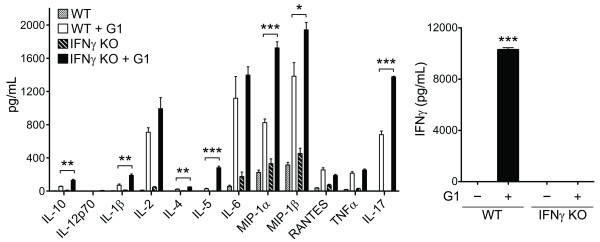 IFNγ-deficiency results in an altered cytokine profile including exacerbated IL-17A production . Antigen specific T cell cytokine production was measured in splenocyte cultures from TCR-Tg mice with intact IFNγ (WT) or TCR-Tg mice lacking IFNγ (IFNγ KO) that were stimulated with the arthritogenic G1 peptide carrying the TCR-specific epitiope. Cytokine levels in the supernatants were quantified by multiplex-ELISA (Luminex) at 48 h post stimulation. Data are the mean ± SEM of values combined from three independent experiments. * P