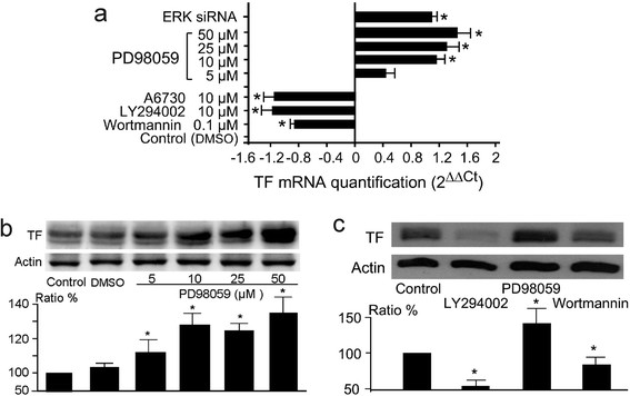 Expression levels of TF mRNA and TF protein in treated MDA-MB-231 cells. Panel a:  The qPCR results of total TF mRNA levels in treated MDA-MB-231 cells. The cells were treated for 24 hr by the indicated agents at the indicated concentrations. qPCR was performed with primers Hs00175225_m1. The results were obtained from three independent experiments. Statistical significance (p