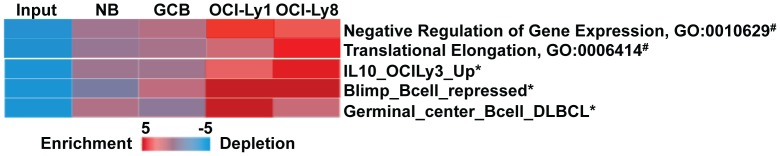 Novel promoter SNVs target important B cell genes in DLBCL. iPAGE analysis using Gene Ontology database (#) [43] or a lymphoid specific gene set database (*) [44] showing strong enrichment of genes that are important for germinal center B cells and DLBCLs contain novel promoter SNVs in OCI-Ly1 and OCI-Ly8 cells.