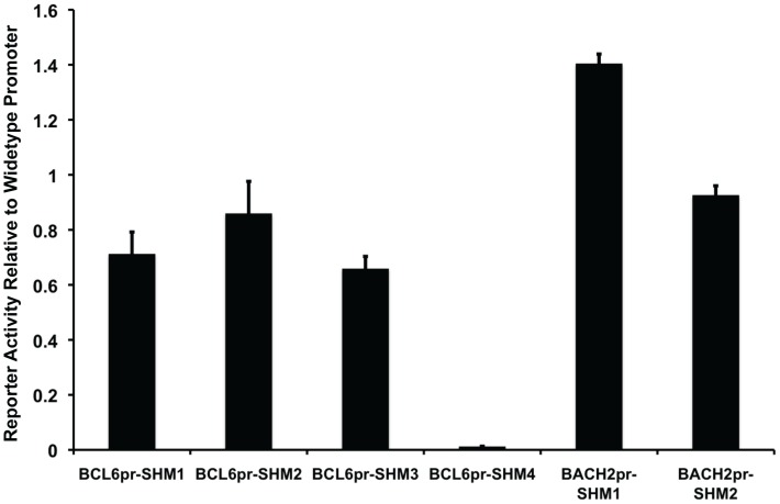 Aberrant SHMs affect promoter activity. The effects of selected SHMs on BCL6 or BACH2 promoter activities were tested by dual luciferase assay in OCI-Ly1. Reporter activity of promoter bearing individual SHM was normalized to reporter activity of the wild-type promoter. Error bars indicate standard errors of three independent experiments.