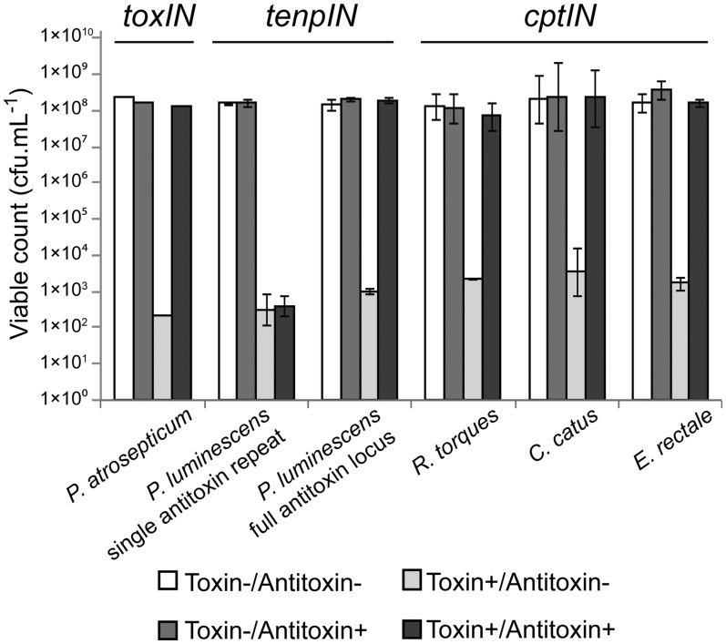 Protection of E. coli DH5α from Type III toxins by cognate antitoxins. Protection assays were performed as described in Materials and Methods. Results for the toxIN system of P. atrosepticum have been published previously ( 9 ); data from a single toxIN experiment is included for illustrative purposes. Of the four new loci tested, all toxin genes reduced viability of the host E. coli , which could then be restored by the full cognate antitoxin. Data shown are the mean values from triplicate experiments, with standard deviations represented by error bars.