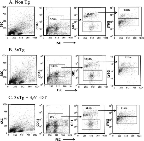 3,6 ′ -dithiothalidomide reduces tumor necrosis factor-α in central nervous system-infiltrating myelomonocytic/granulocytic leukocytes. (A) Non-Tg mice; (B) 3 × Tg mice; (C) 3,6′-DT mice. CNS-infiltrating leukocytes from whole mouse brains (n = 3 to 4 per group) were isolated and evaluated for the presence of CD45 hi and myelomonocytes/granulocytes (CD45 hi /Gr1 + /Ly6G hi ) by cell surface staining and flow cytometric analyses. There was a trend towards an increased percentage of CD45 hi cells and CD45 hi /Gr1 + /Ly6G hi (not significant) in 3 × Tg mice (B) relative to Non-Tg (A) mice. 3,6′-DT (C) did not alter the percentages of these cell populations. TNFα expression in the total CD45 hi population and in the granulocyte population was increased in 3 × Tg mice relative to Non-Tg mice. 3,6′-DT treatment did not reduce TNFα expression in the total CD45 hi population but specifically reduced TNFα expression in the CD45 hi /Gr1 + /Ly6G hi population ( P = 0.031). Flow cytometry results were quantified and are presented in Table 1 .