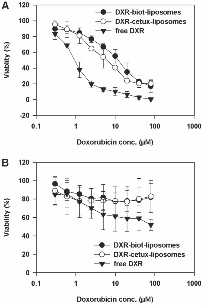 Cytotoxicity of EGFR-targeted and non-targeted doxorubicin-liposomes and free doxorubicin. SKOV-3 (A) and CV-1 (B) cells were exposed to liposomal and free doxorubicin (DXR) (0.3–80 µM) for 2 h. After exposure to the drug, the cells were washed and incubated in growth medium for 5 days. Cell growth was assayed using Alamar Blue®. The data are presented as mean ± SD.