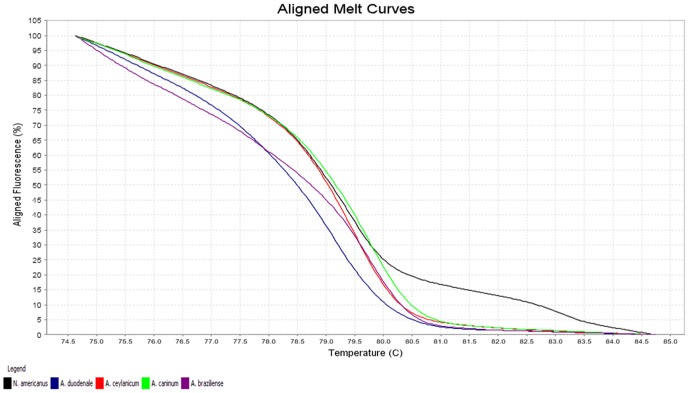 Representative profiles of the melting curves (aligned melt curves) of ITS-2 amplicons for Necator americanus (black), Ancylostoma duodenale (blue), A. ceylanicum (red), A. caninum (green) and A. braziliense (purple). Fluorescence is plotted against degrees Celsius (°C).