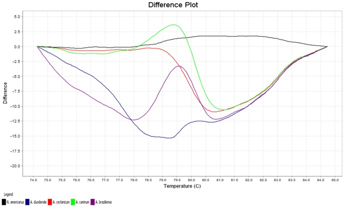 Representative profiles of the melting curves (difference plot curves) of ITS-2 amplicons for Necator americanus (black), Ancylostoma duodenale (blue), A. ceylanicum (red), A. caninum (green) and A. braziliense (purple).