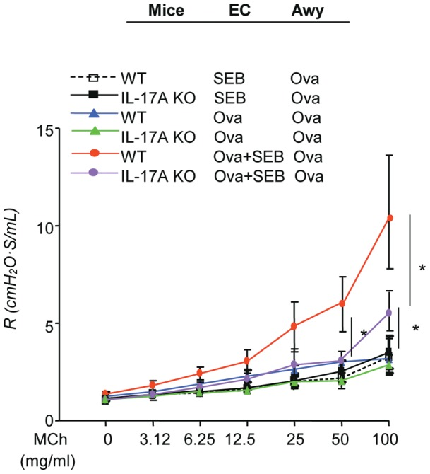 Deletion of IL-17A gene reduced SEB enhanced Ova-induced changes in lung physiology. (a) Airway resistance in response to methacholine after epicutaneous sensitization and Ova airway challenge. The columns and error bars represent Mean ± SEM (shown are combined data from two separate experiments; n = 4–5 per group; * p