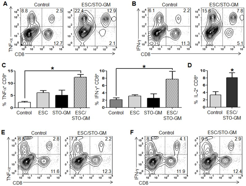 ESC vaccination induces tumor cell-specific, Th1-mediated cytokine response in CD8 + T cells. C57BL/6 mice (6/group) were immunized twice (days 0 and 14) with HBSS (control) or irradiated 1×10 6 ESC alone, or irradiated 1×10 6 ESC+irradiated 1×10 6 STO-GM, or irradiated 1×10 6 STO-GM cells alone, s.c. in the right flank. Ten days after the boost, mice were euthanized and spleens were removed. Splenocytes from vaccinated and control mice were co-cultured with LLC lysate (50 µg/ml) for an additional 4 days. Effectors were harvested and stimulated for 4 hours with PMA (50 ng/ml) and ionomycin (500 ng/ml) in the presence of Brefeldin A (1 µl/ml). After restimulation, effectors were harvested, Fc receptors were blocked, and stained for surface expression of CD4, CD8 and intracellular expression of cytokines and analyzed by flow cytometry. ( A, B ) Dot plots showing TNF-α and IFN-γ expression in CD8 + cells in splenocyte cultures obtained from control and ESC/STO-GM vaccinated mice. Numbers in quadrants represent the percentages of each subpopulation. ( C, D ) Bar graphs showing percentages of CD8 + TNF-α + , CD8 + IFN-γ + , and CD8 + IL2 + cells in splenocyte cultures derived from control, ESC alone, STO-GM alone and ESC/STO-GM vaccinated mice. Results are expressed as percentages of total cells. *, p
