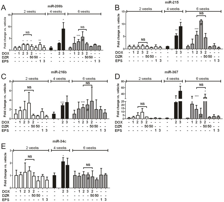 Relative quantification of DOX-responder microRNAs in rat heart across all groups. Relative quantification of (A) miR-208b, (B) miR-215, (C) miR-216b, (D) miR-367 and (E) miR-34c in DOX, DOX + DZR, EPS groups, normalized versus vehicle treated animals. Expression levels were measured by single assay qPCR (n = 3, except #, n = 2). DOX: Doxorubicin, DZR: dexrazoxane, EPS: etoposide; numbers indicate the weekly dose of each compound in mg/kg/week. Empty spaces represent non-sampled animals. The vehicle treated is the first column of each time-point. The animals used in this experiment were distinct from the ones represented in Table 1 . Error bars represent SD. T-test results are indicated by asterisks for significant DOX-treated groups vs. their own vehicle-treated, unless otherwise specified by horizontal range bars; *P